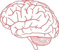 Study category: Brain and Nervous System